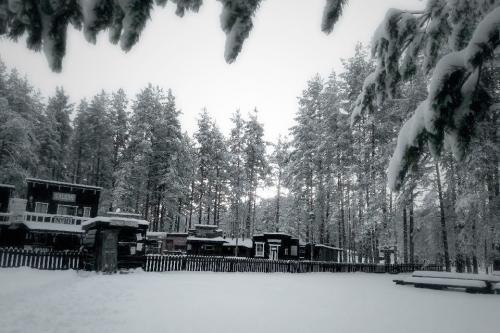 Vinter2018 13